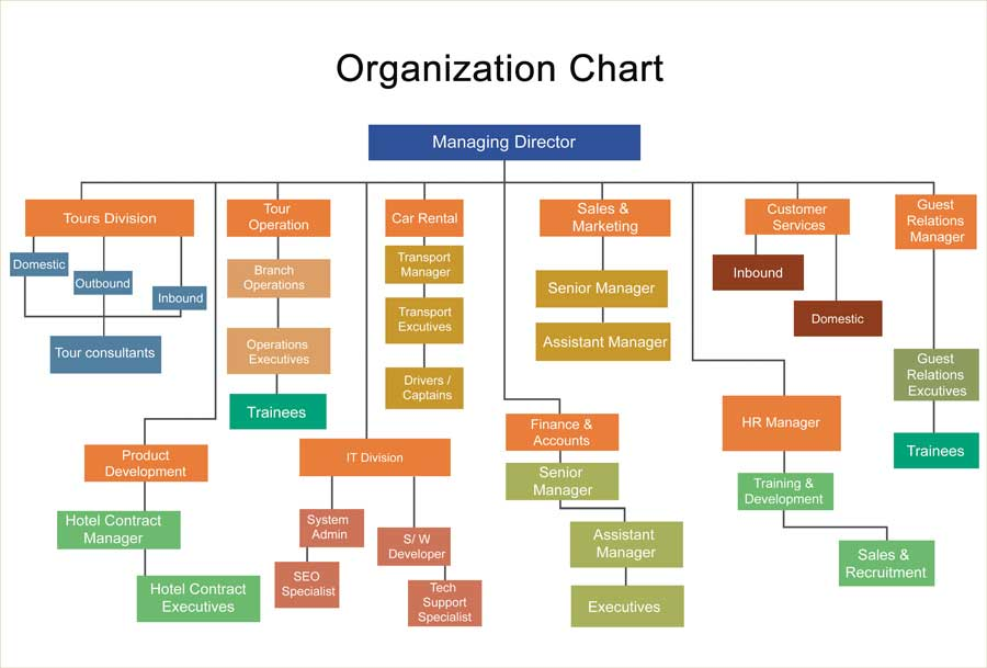 Organization Chart of Cholan Tours